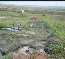 odisha water pollution fly ash coal