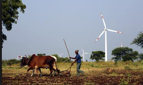 cultivation india near wind turbines