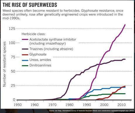 resistant-weeds3